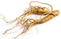 Ginseng Root: Different Types and Uses